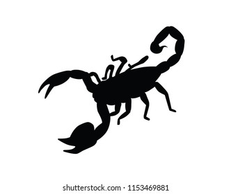 Scorpion silhouette isolated vector