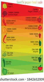 Scoville pepper heat scale. Pepper illustration from sweetest to very hot on color background.
