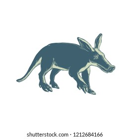 Scratchboard style illustration of an aardvark, a medium-sized, burrowing, nocturnal mammal that is an insectivore with a long pig-like snout done on scraperboard on isolated background.