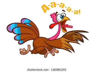 Screaming running cartoon turkey bird character. Vector illustration