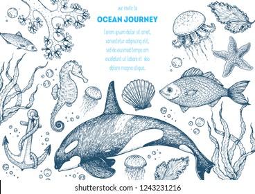 Sea animals hand drawn collection. Sketch illustration. Killer whale, sea horse, jellyfish, fish, seaweed, seashells illustration. Vintage design template. Undersea world.