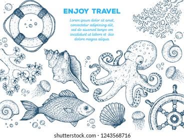 Sea animals hand drawn collection. Sketch illustration. Octopus, jellyfish, fish, seaweed, seashells, coral illustration. Vintage design template. Undersea world.