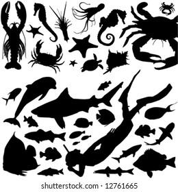 sea animals and scuba diving vector
