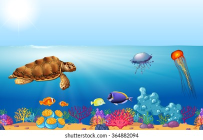 Sea animals swimming under the ocean illustration