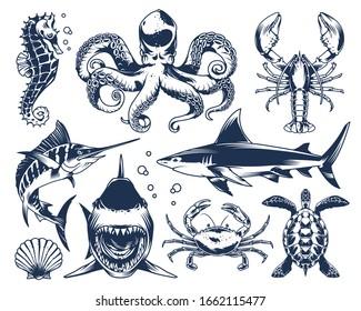 Sea animals vintage set with seahorse octopus shark crab lobster swordfish seashell turtle on light background isolated vector illustration
