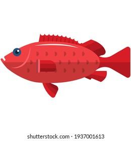 Sea bass vector. Sea dweller illustration fishing icon. Marine grouper isolated on white background. Largemouth seabass emblem