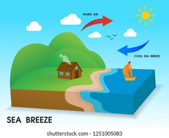 Sea breeze. The cold wind blows from the sea to the coast in the daytime.