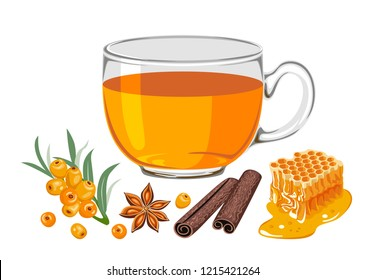 Sea buckthorn tea in glass cup isolated on white background. Sea buckthorn berries, honey combs, star anise, cinnamon sticks. Vector illustration of hot drink in flat simple cartoon style.
