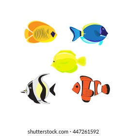 Sea color flat design fish  Tropical fish set  on white background. Cute fish vector illustration icons set.