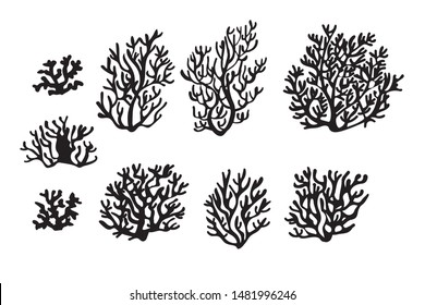 Sea corals and seaweed. Underwater and aquarium plant silhouettes. Black and white esign elements for sea bottom scene. Vector illustration isolated in white.