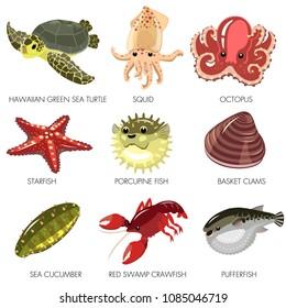 Sea Creature vector Sea Turtle Squid Octopus Starfish  Sea Cucumber Porcupine Fish Basket Clams Red Swamp Craw fish  Puffer fish
