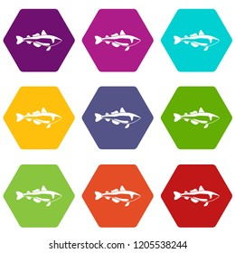 Sea fish icons 9 set coloful isolated on white for web