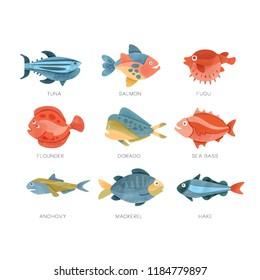 Sea fish set, tuna, salmon, fugu, flounder, dorado, sea bass, anchovy, mackerel, hake vector Illustrations on a white background
