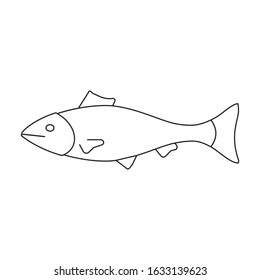 Sea fish vector icon.Outline,line vector icon isolated on white background sea fish.