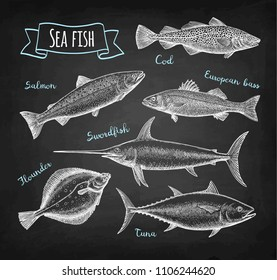 Sea food set. Chalk sketch on blackboard background. Hand drawn vector illustration. Retro style.