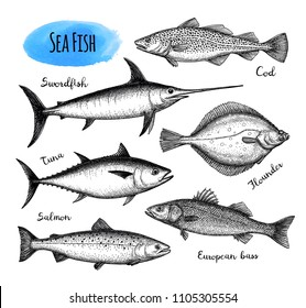 Sea food set. Ink sketch isolated on white background. Hand drawn vector illustration. Retro style.