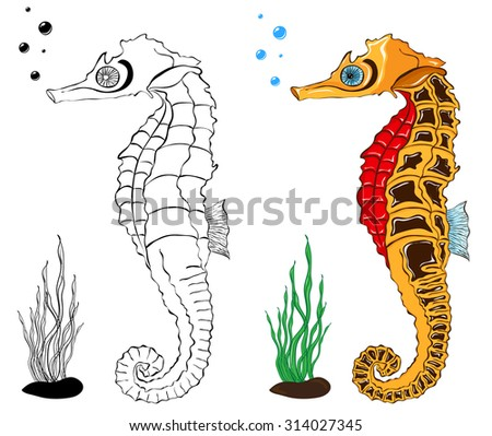 Sea Horse Coloring Pages Stock Vector Royalty Free 314027345