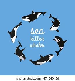 sea killer whales