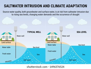 Sea Level Rise infographic. Saltwater intrusion and climate adaptation. Environmental vector infographic. Water pollution. Global warming and climate change vector concept.