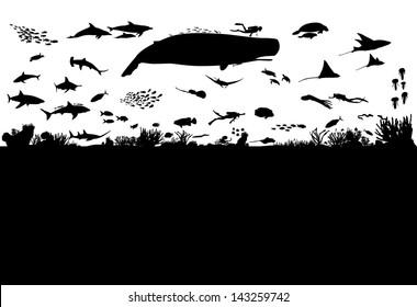 Sea life scene silhouette, vector