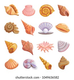 Sea shell beach icons set. Cartoon illustration of 16 Sea shell beach tropical underwater vector icons for web