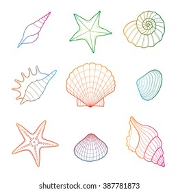 Sea shell, seashell, starfish. Seahells in vector isolated on white.