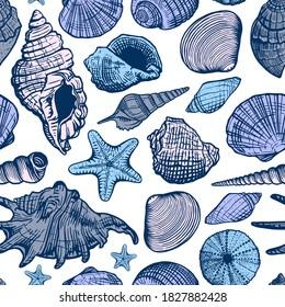Sea shells colorful vector seamless pattern. Shell beautiful hand drawn illustration. Marine background.