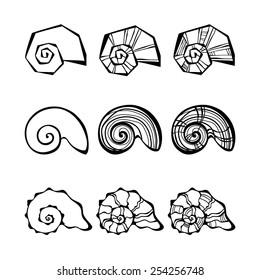 Sea shells icon set isolated on a white background. Art logo design