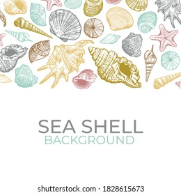 Sea shells vector background. Hand drawn trendy color shell. Summer banner design