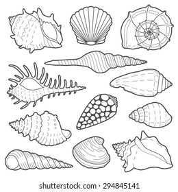 Sea shells vector icon set isolated on a white background