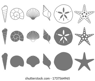 Sea Shells Vector Illustration Set on White