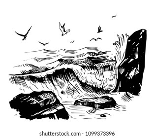 Sea sketch with rocks, waves and gulls. Hand drawn illustration converted to vector