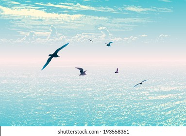 Sea sky landscape birds summer travel horizon