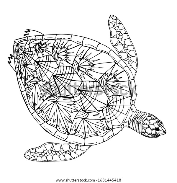 - Sea Turtle Coloring Book Hand Drawing Stock Vector (Royalty Free) 1631445418