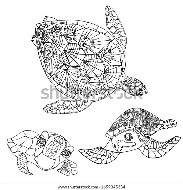 - Sea Turtle Coloring Book Hand Drawing Stock Vector (Royalty Free) 1659345334