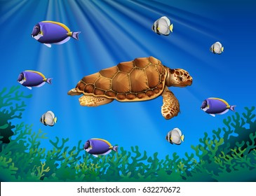 Sea turtle and fish swimming underwater illustration