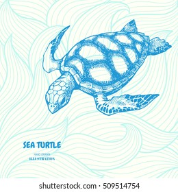 Sea turtle. Hand drawn vector illustration with turtle on wave background