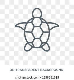 Sea turtle icon. Sea turtle design concept from Summer collection. Simple element vector illustration on transparent background.