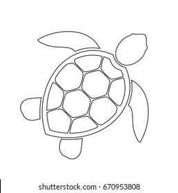 Sea turtle line icon. Vector illustration