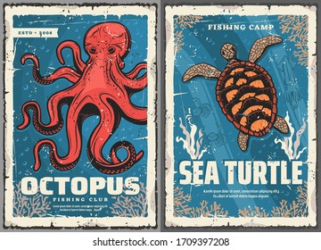 Sea turtle, octopus, crab and squid retro posters of fisherman club and fishing sport vector design. Seafood animals, crustacean and mollusk in blue water with ocean corals and seaweed