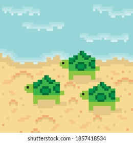 Sea turtle pixel art. Vector picture. Turtles and baby turtles into the sea.