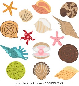 Sea  vector set with colorful sea shell.