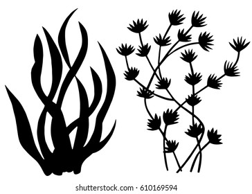 Sea weed black silhouettes, grass, leaves set isolated on white background