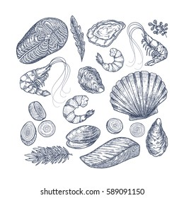 Seafood collection. Engraved vintage sea restaurant set. Vector illustration