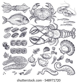 Seafood fish, shrimp, crab, lobster, octopus, mollusks, Japanese sushi isolated graphic black ink on a white background a set. Vintage engraving illustration art. Vector. Food and restaurant design.