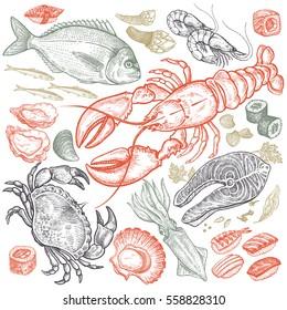 Seafood fish, shrimp, crab, lobster, octopus, mollusks, sushi color isolated on white background. Vintage illustration art. Vector set of food. Design for menu, cafes, restaurants, shops, fish markets