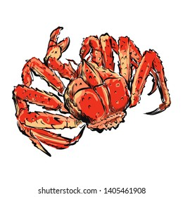 seafood grap  hand drawn digital paintng white background vector illustion