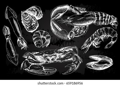Seafood hand drawn collection with crab, lobster, shrimps and other sea animals in sketch style on chalkboard