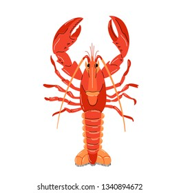 Seafood illustration in cartoon style. Red lobster on a white background