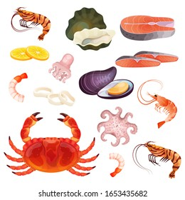 Seafood isolated on white, set of fresh ocean delicacies, oyster, prawn and shrimp, vector illustration. Fresh sea food, salmon fillet, mussel, crab and octopus. Shellfish, clam and slice of lemon set